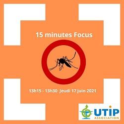 focus_moustiques
